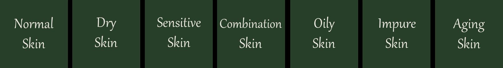 List of skin types: normal skin, dry skin, sensitive skin, combination skin, oily skin, impure skin, aging skin